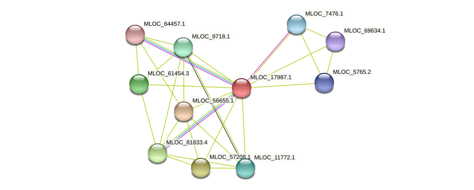 MLOC_17987.1 protein (Hordeum vulgare) - STRING interaction network