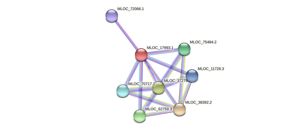 MLOC_17993.1 protein (Hordeum vulgare) - STRING interaction network
