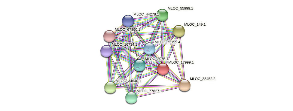 MLOC_17999.1 protein (Hordeum vulgare) - STRING interaction network
