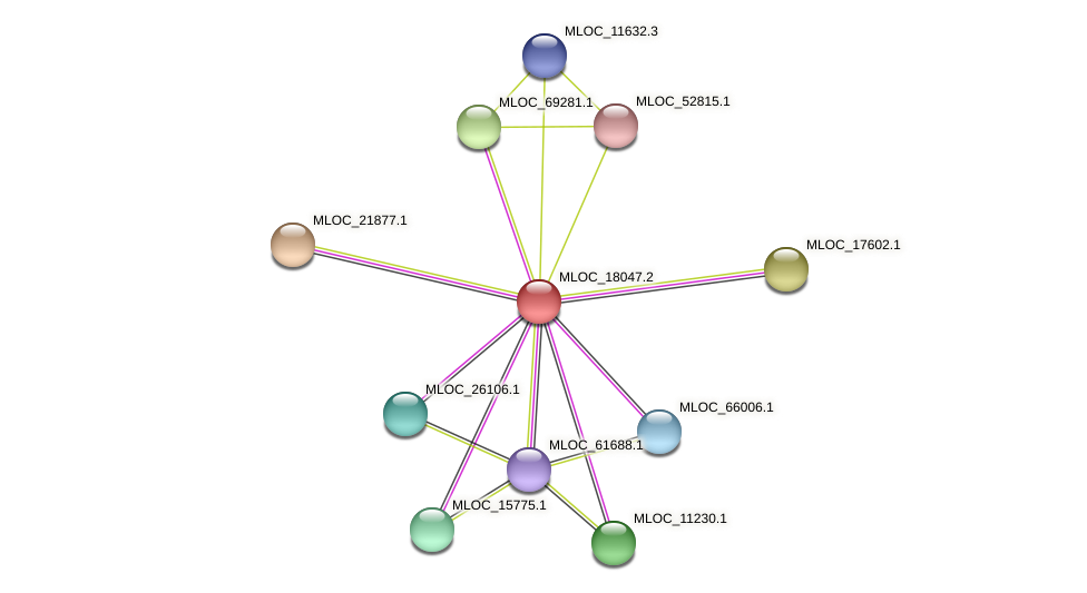 MLOC_18047.2 protein (Hordeum vulgare) - STRING interaction network