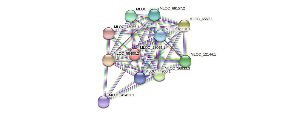 MLOC_18065.1 protein (Hordeum vulgare) - STRING interaction network