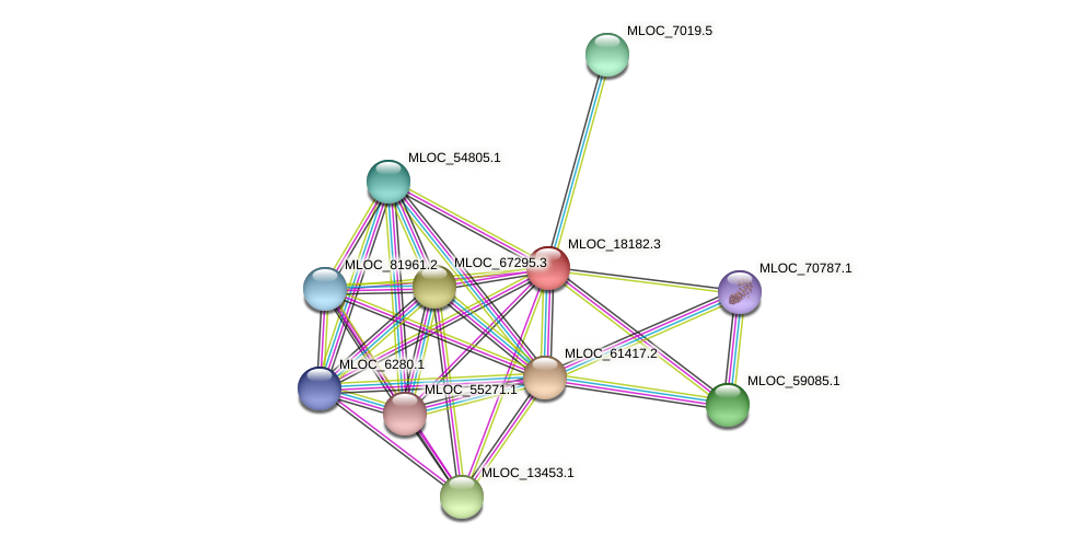 MLOC_18182.3 protein (Hordeum vulgare) - STRING interaction network