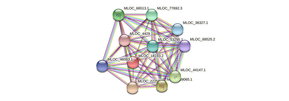 MLOC_18193.2 protein (Hordeum vulgare) - STRING interaction network