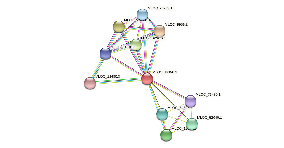 MLOC_18196.1 protein (Hordeum vulgare) - STRING interaction network