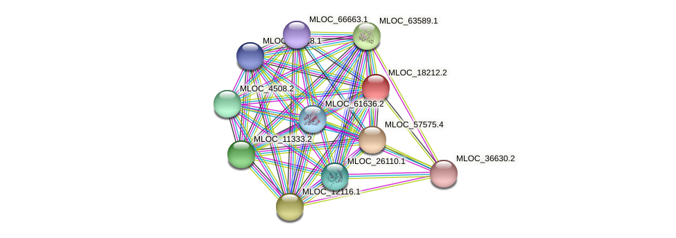 MLOC_18212.2 protein (Hordeum vulgare) - STRING interaction network