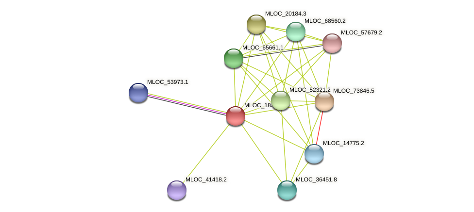 MLOC_18272.3 protein (Hordeum vulgare) - STRING interaction network