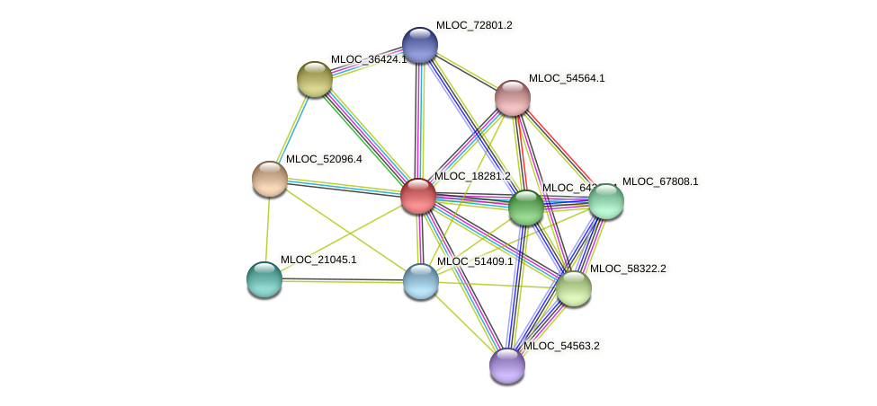 MLOC_18281.2 protein (Hordeum vulgare) - STRING interaction network