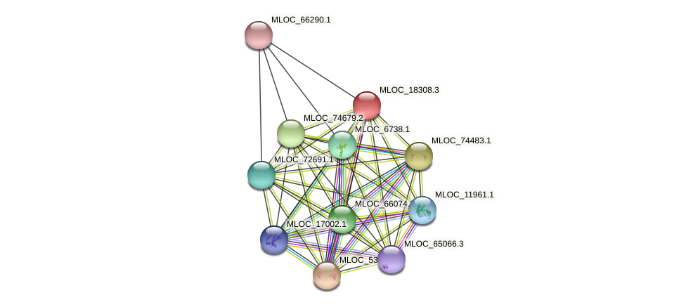 MLOC_18308.3 protein (Hordeum vulgare) - STRING interaction network