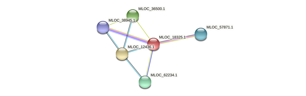 MLOC_18325.1 protein (Hordeum vulgare) - STRING interaction network