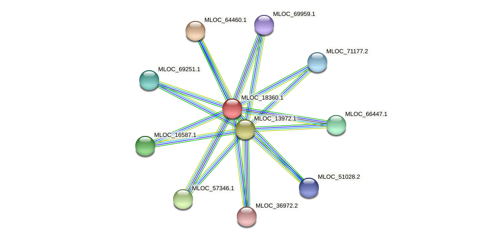 MLOC_18360.1 protein (Hordeum vulgare) - STRING interaction network