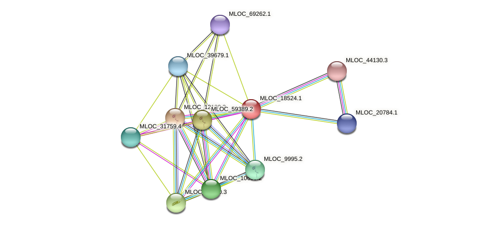MLOC_18524.1 protein (Hordeum vulgare) - STRING interaction network