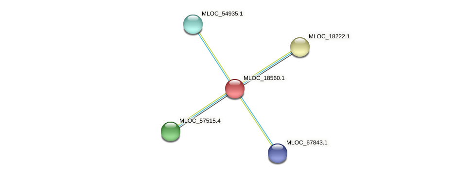 MLOC_18560.1 protein (Hordeum vulgare) - STRING interaction network