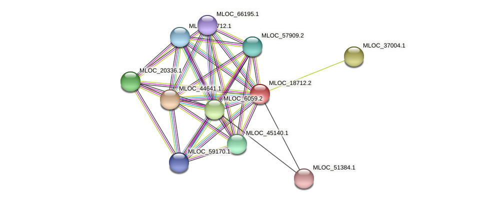 MLOC_18712.2 protein (Hordeum vulgare) - STRING interaction network