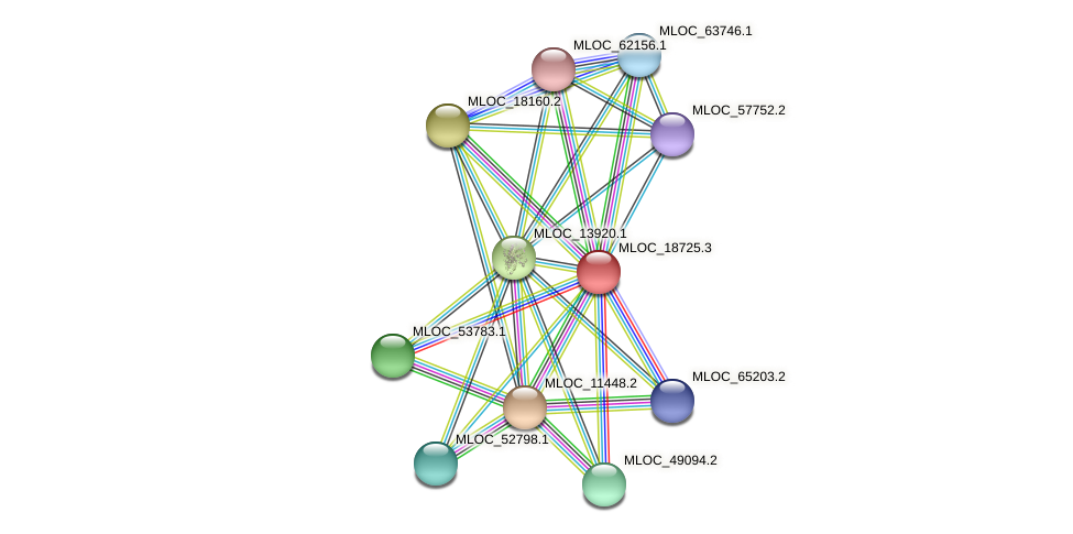MLOC_18725.3 protein (Hordeum vulgare) - STRING interaction network