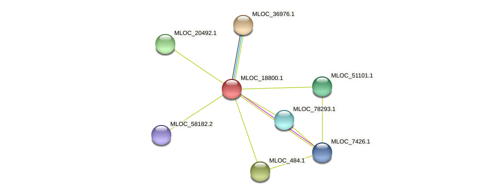 MLOC_18800.1 protein (Hordeum vulgare) - STRING interaction network