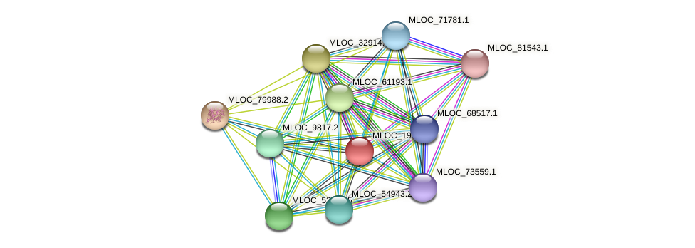 MLOC_19025.1 protein (Hordeum vulgare) - STRING interaction network