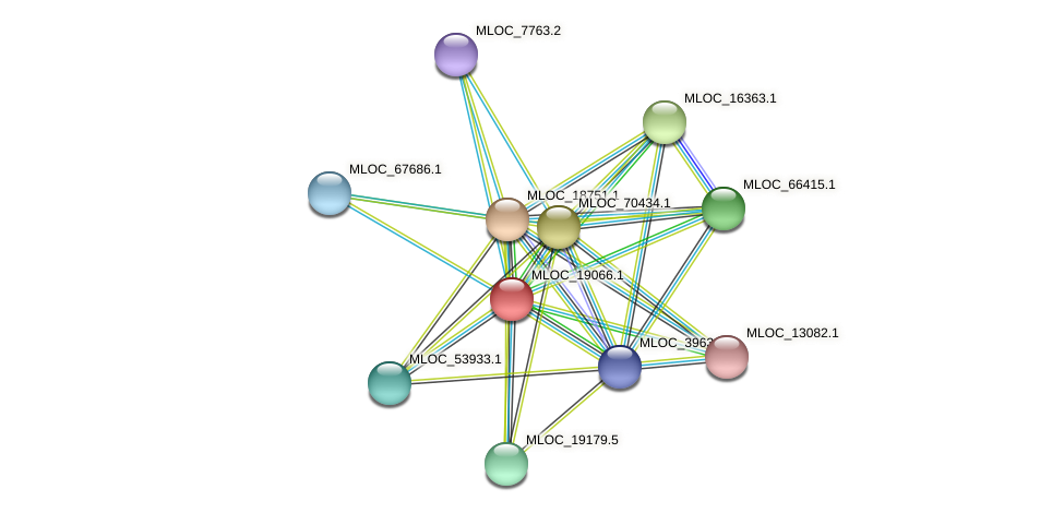 MLOC_19066.1 protein (Hordeum vulgare) - STRING interaction network