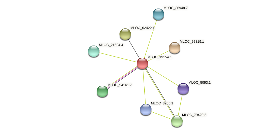 MLOC_19154.1 protein (Hordeum vulgare) - STRING interaction network
