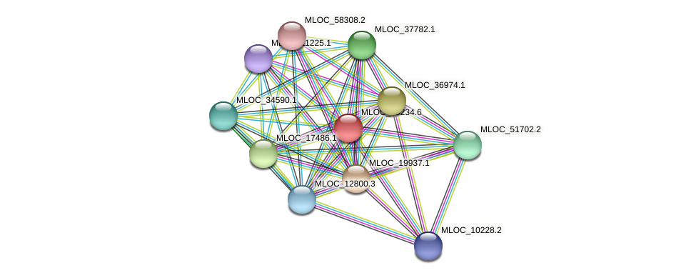 MLOC_19234.6 protein (Hordeum vulgare) - STRING interaction network