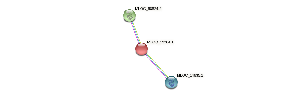 MLOC_19284.1 protein (Hordeum vulgare) - STRING interaction network