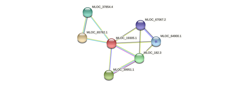 MLOC_19305.1 protein (Hordeum vulgare) - STRING interaction network
