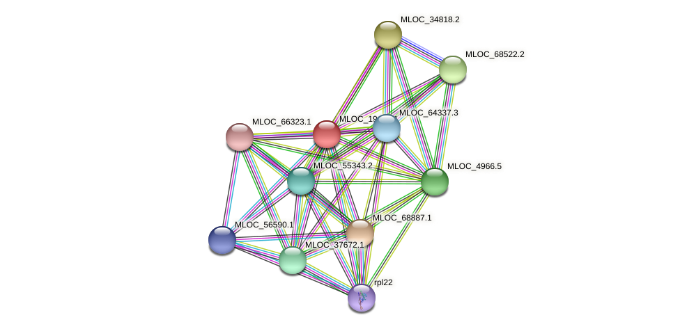 MLOC_19434.1 protein (Hordeum vulgare) - STRING interaction network