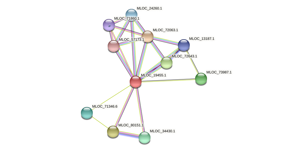 MLOC_19455.1 protein (Hordeum vulgare) - STRING interaction network