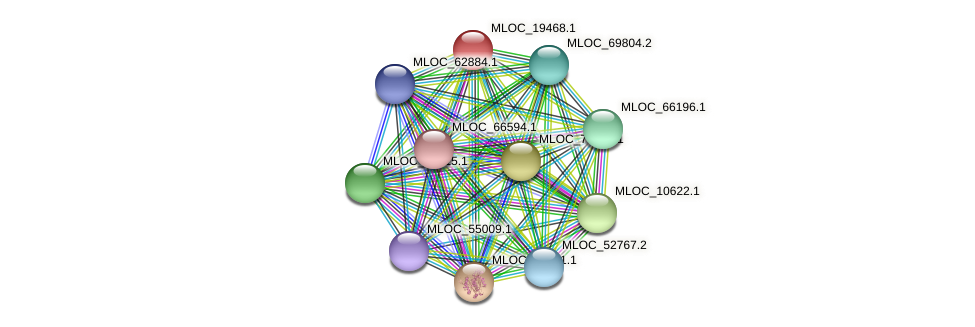 MLOC_19468.1 protein (Hordeum vulgare) - STRING interaction network