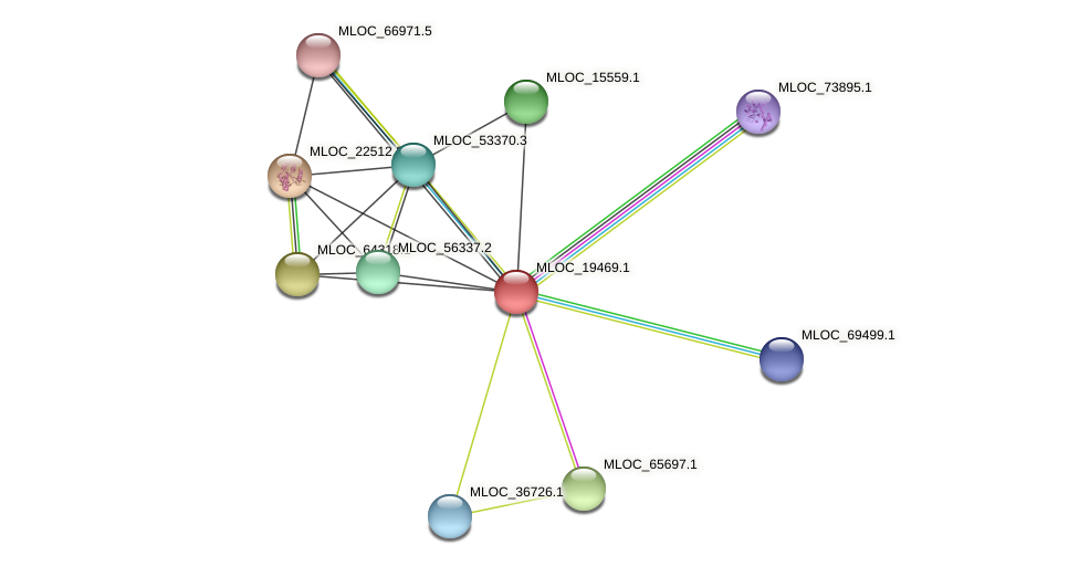 MLOC_19469.1 protein (Hordeum vulgare) - STRING interaction network