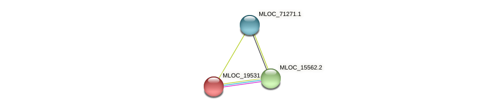 MLOC_19531.1 protein (Hordeum vulgare) - STRING interaction network