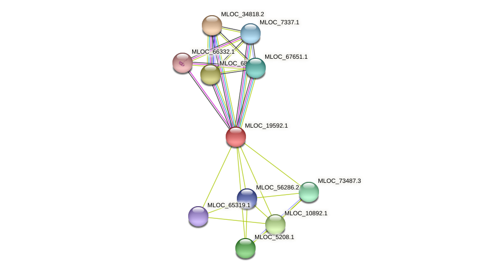 MLOC_19592.1 protein (Hordeum vulgare) - STRING interaction network