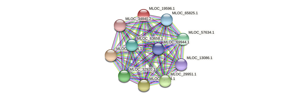 MLOC_19596.1 protein (Hordeum vulgare) - STRING interaction network