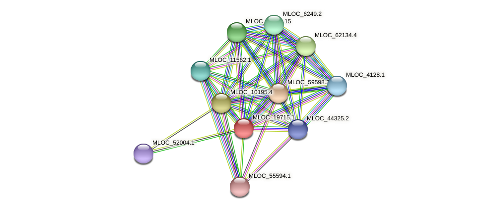 MLOC_19715.1 protein (Hordeum vulgare) - STRING interaction network