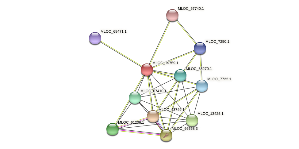 MLOC_19759.1 protein (Hordeum vulgare) - STRING interaction network