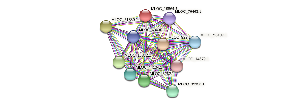 MLOC_19864.1 protein (Hordeum vulgare) - STRING interaction network