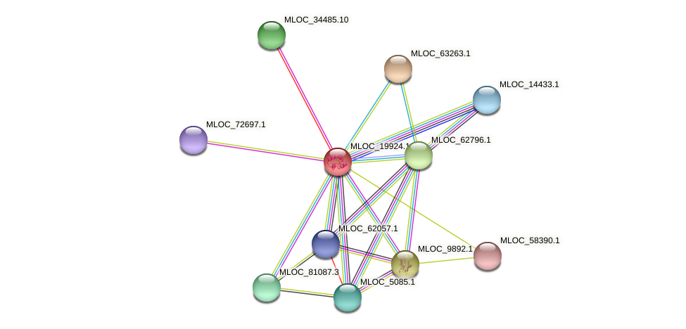 MLOC_19924.1 protein (Hordeum vulgare) - STRING interaction network