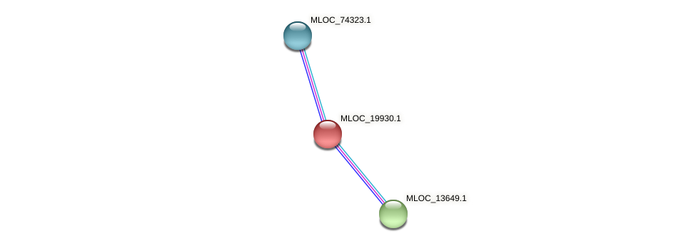 MLOC_19930.1 protein (Hordeum vulgare) - STRING interaction network