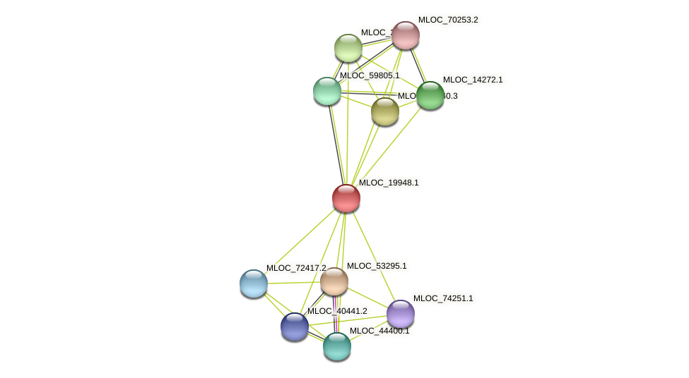 MLOC_19948.1 protein (Hordeum vulgare) - STRING interaction network
