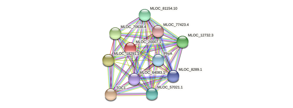 MLOC_20007.1 protein (Hordeum vulgare) - STRING interaction network