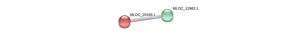 MLOC_20165.1 protein (Hordeum vulgare) - STRING interaction network
