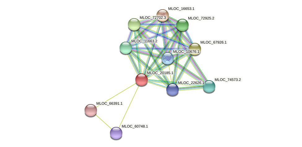 MLOC_20185.1 protein (Hordeum vulgare) - STRING interaction network