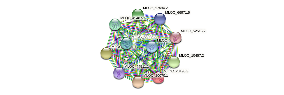 MLOC_20190.3 protein (Hordeum vulgare) - STRING interaction network