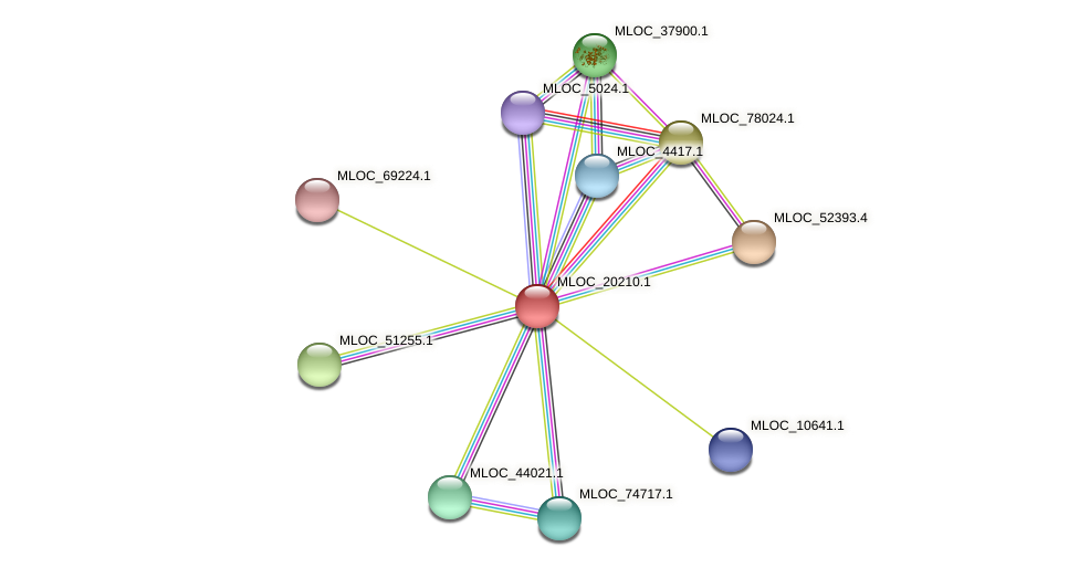 MLOC_20210.1 protein (Hordeum vulgare) - STRING interaction network
