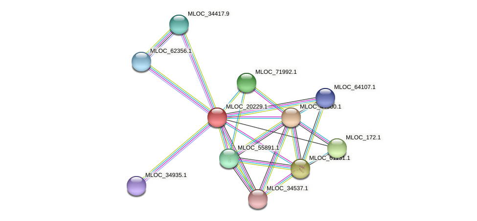 MLOC_20229.1 protein (Hordeum vulgare) - STRING interaction network