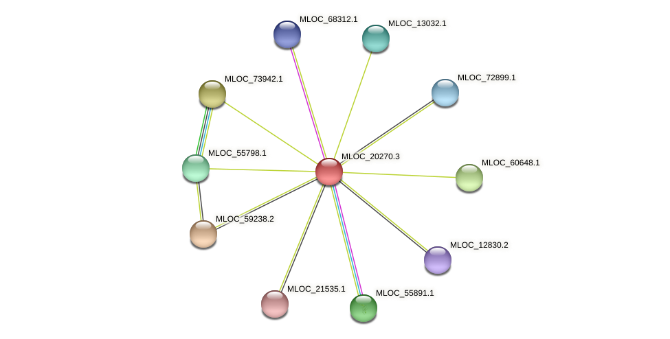 MLOC_20270.3 protein (Hordeum vulgare) - STRING interaction network