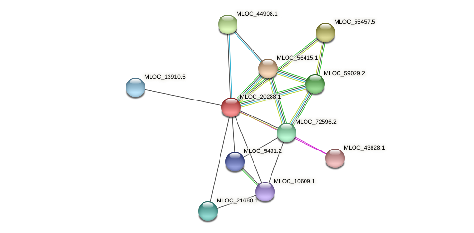 MLOC_20288.1 protein (Hordeum vulgare) - STRING interaction network