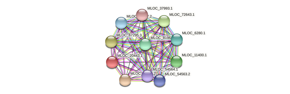 MLOC_20443.1 protein (Hordeum vulgare) - STRING interaction network