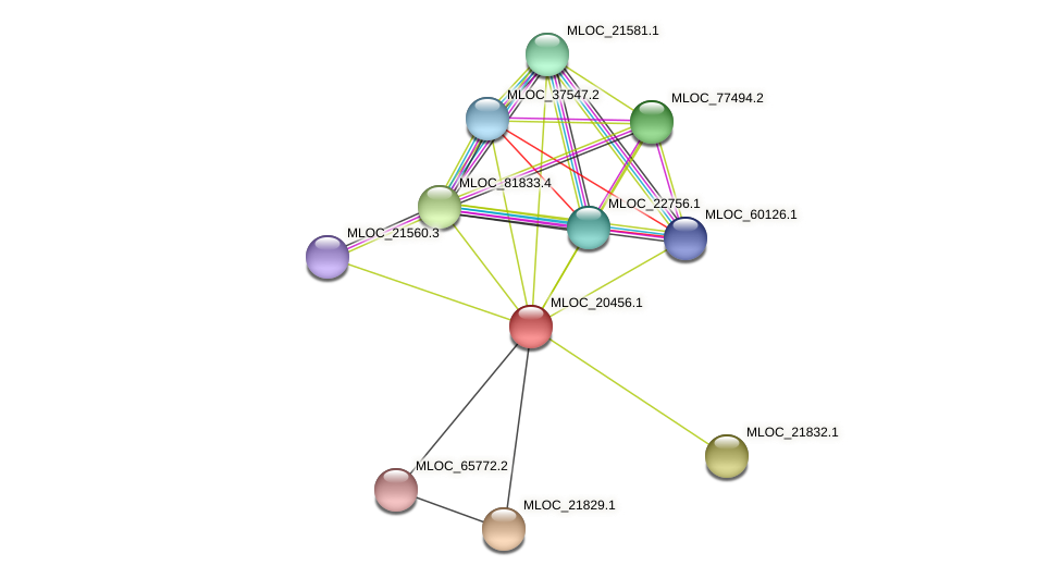 MLOC_20456.1 protein (Hordeum vulgare) - STRING interaction network