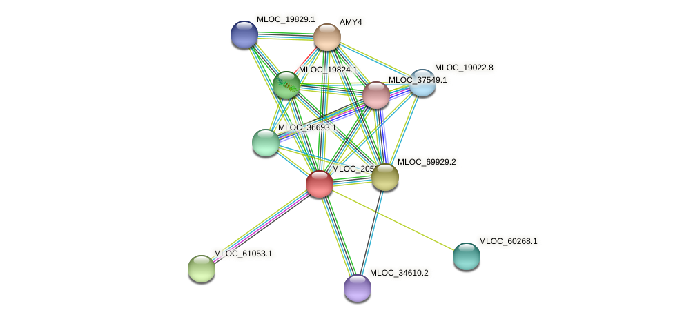 MLOC_2050.1 protein (Hordeum vulgare) - STRING interaction network