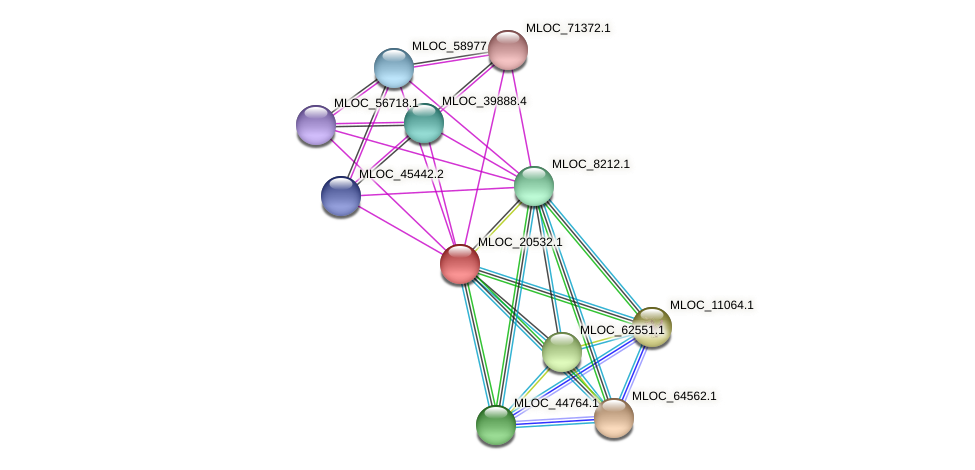 MLOC_20532.1 protein (Hordeum vulgare) - STRING interaction network
